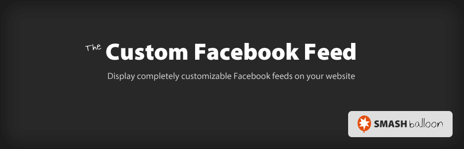 The Custom Facebook Feed plugin.